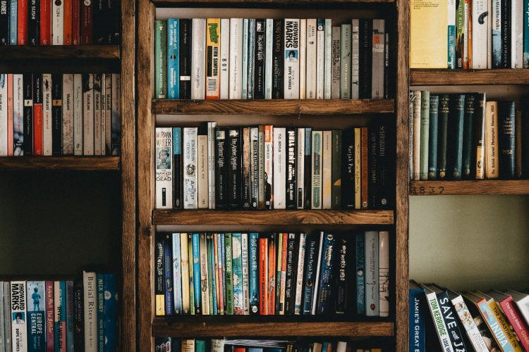 Why Should You Consider Setting Up a Library in Your Basement